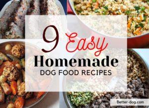homemade recipes img